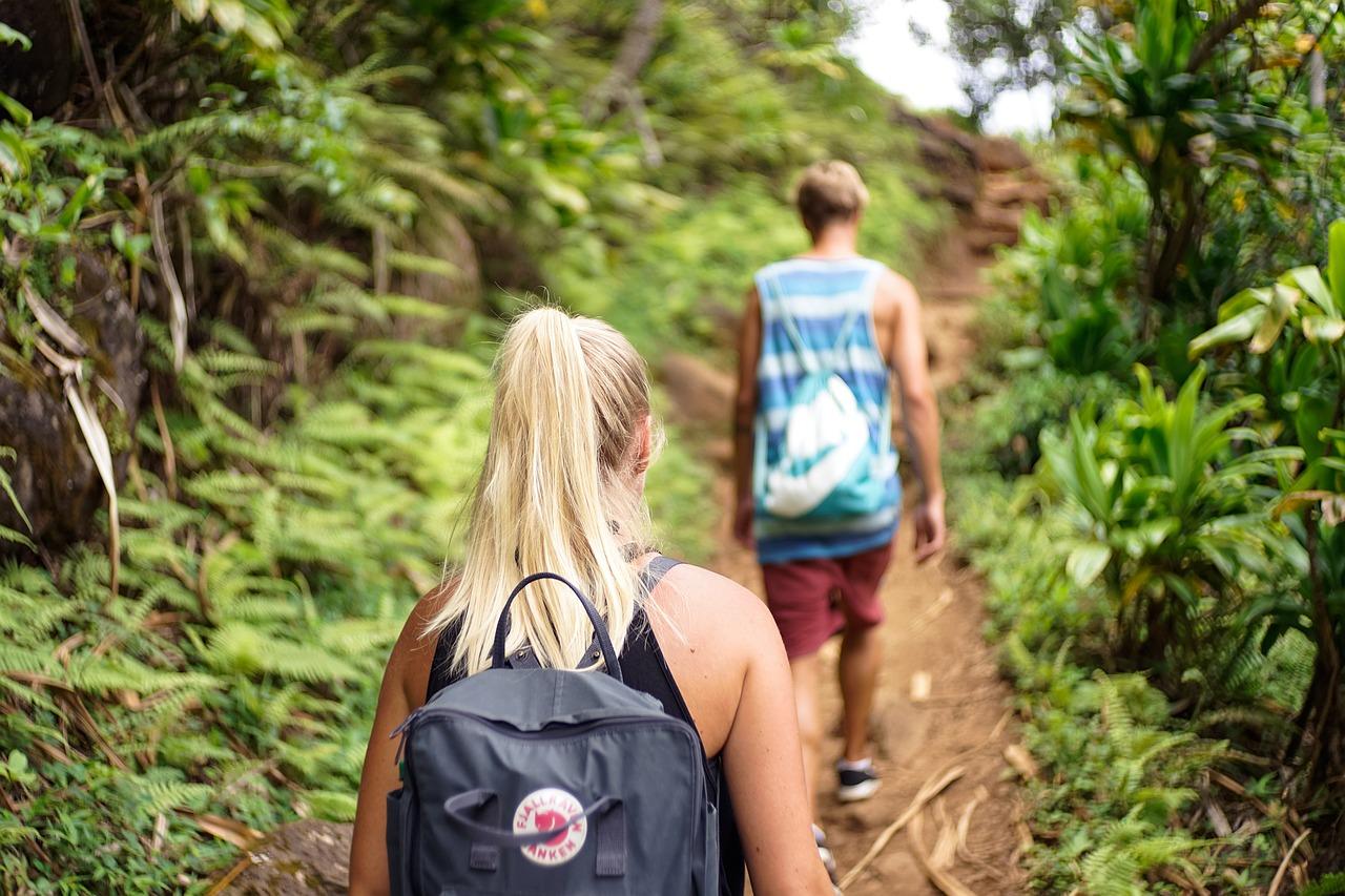 Être prêt pour un voyage dans la forêt amazonienne